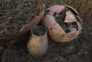 Archaeology, Art and Mud at the North West Cambridge Site